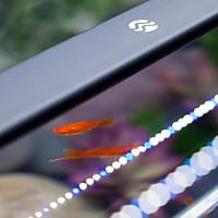 Current USA Satellite Freshwater Aquarium LED Light, Adjustable from 18' - 24' Length