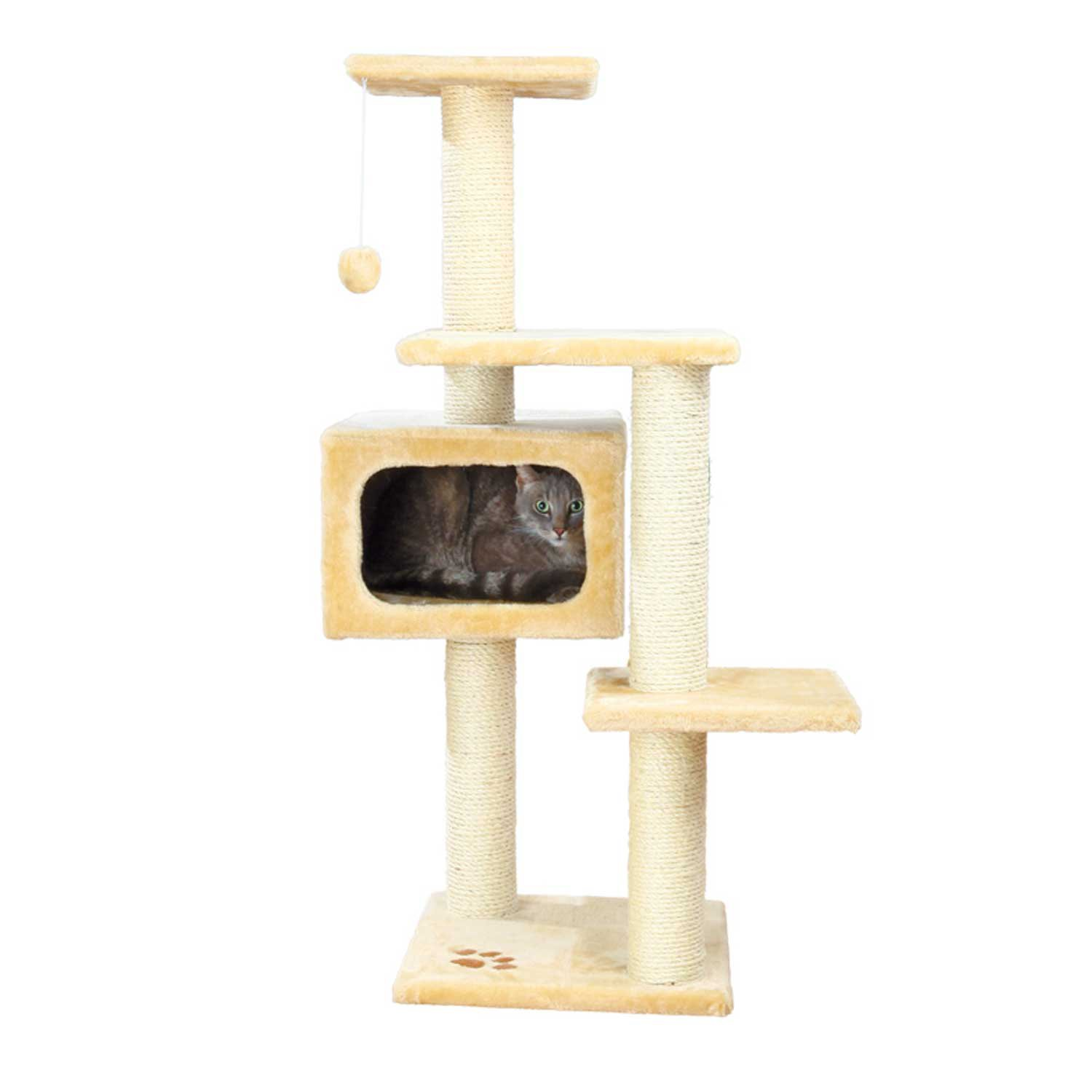 Nov 24,  · Get free shipping when you spend $49 or more on cat perches, towers, and trees. Your feline will love the endless opportunities to relax, play, and explore!