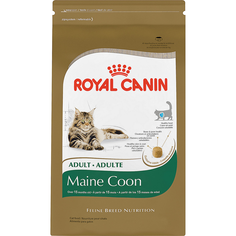 royal canin feline breed nutrition maine coon adult cat. Black Bedroom Furniture Sets. Home Design Ideas