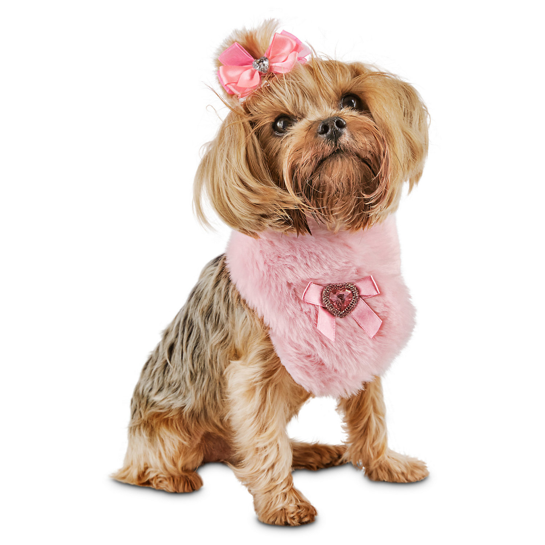 Q Dog Brand brand:Smoochie ...