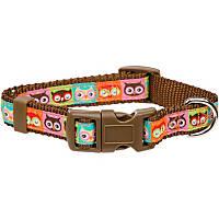 Petco Owl Nylon Adjustable Dog Collar
