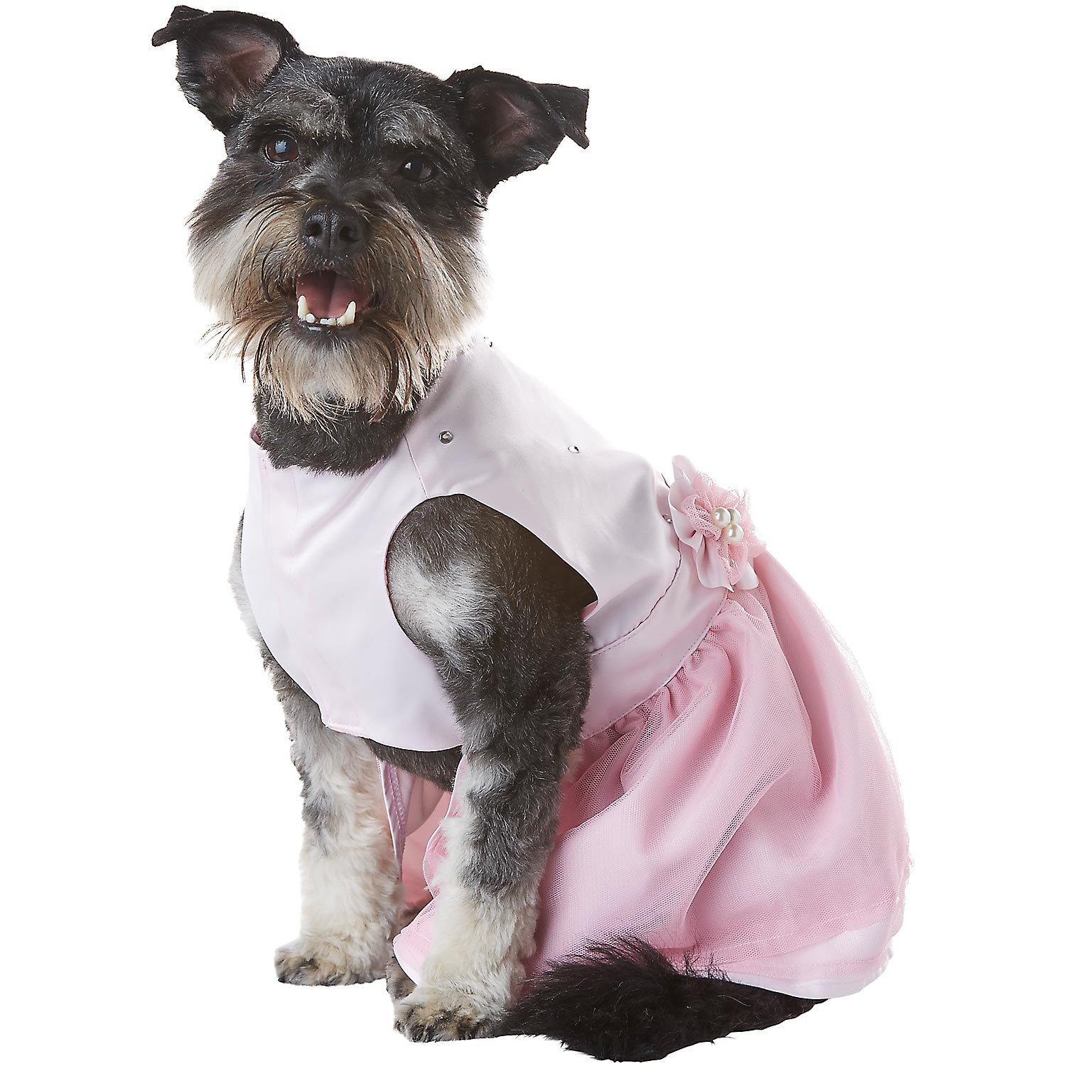 Petco special occasions wedding dog flower girl dress for Wedding dress for dog