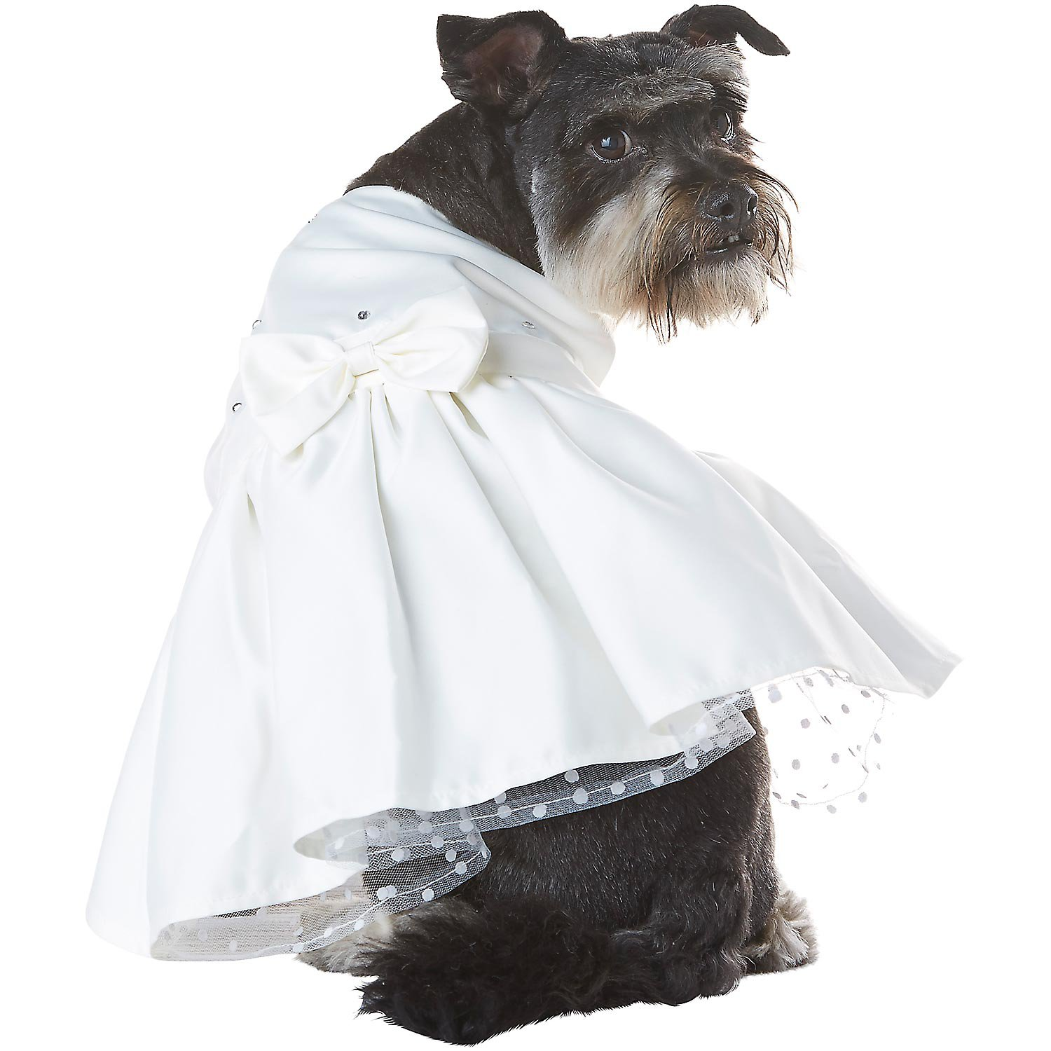 Petco Special Occasions Wedding Dog Bride Dress Petco