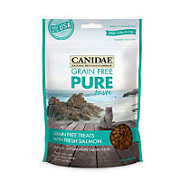 Canidae Grain Free Pure Taste with Fresh Salmon Cat Treats