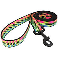 Bison Pet Rad Nylon Dog Leash