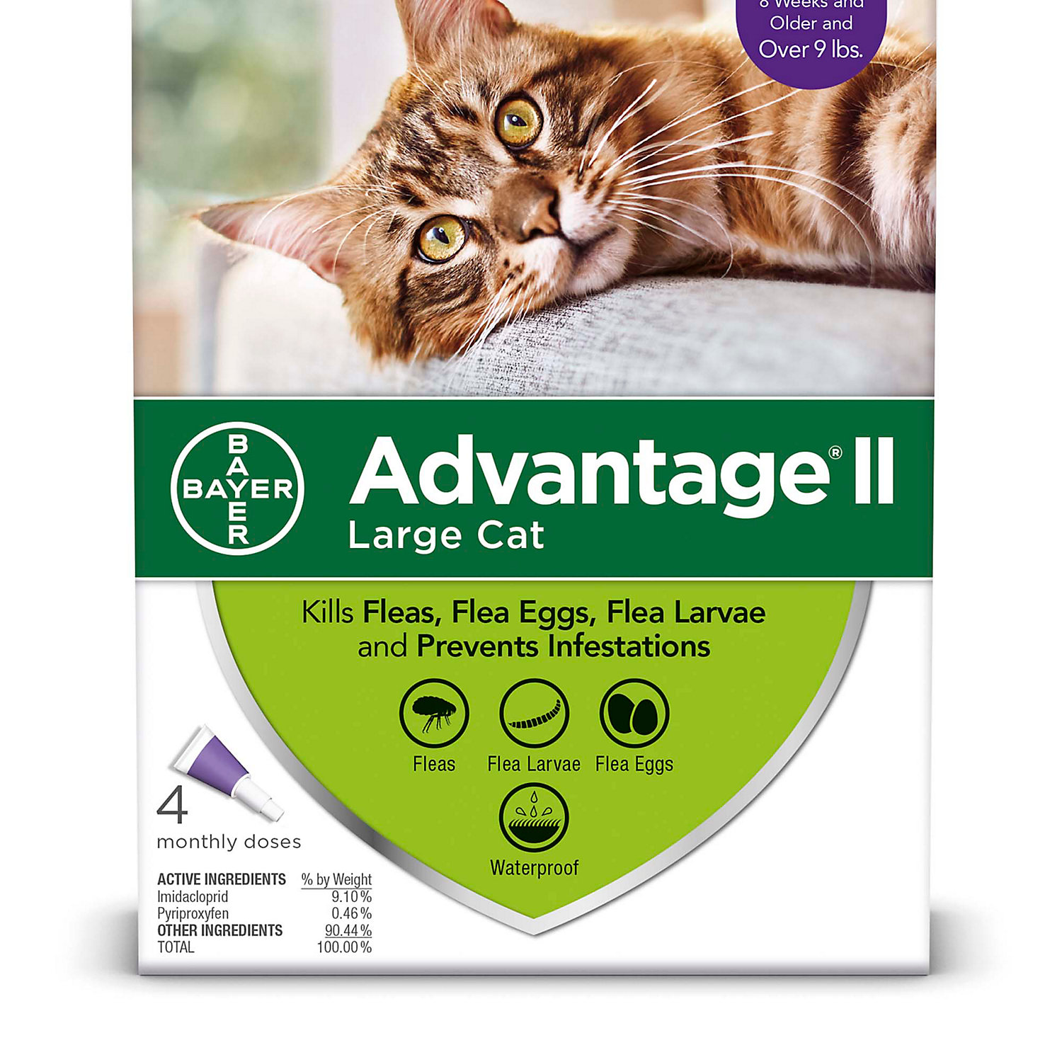 Advantage Ii Once A Month Topical Large Cat Flea Treatment 4 Mo. Over 9 Lbs.