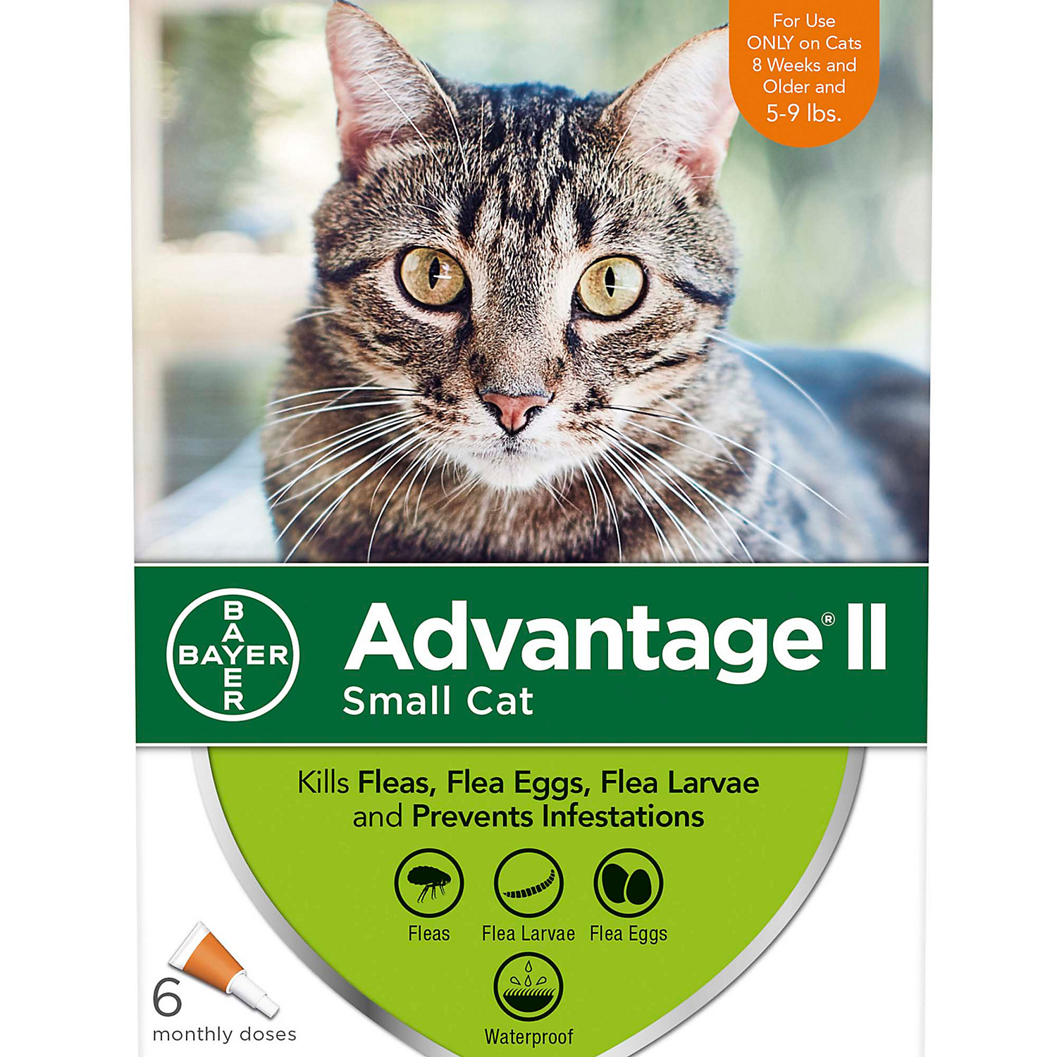 Advantage Ii Once A Month Topical Small Cat Flea Treatment 6 Mo. 5 To 9 Lbs.