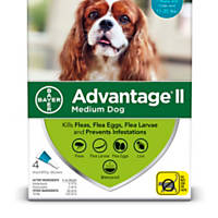 Advantage II Once-A-Month Topical Medium Dog Flea Treatment, 4 mo., 11 to 20 lbs.