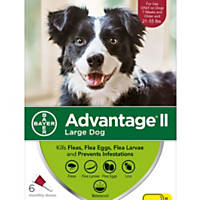 Advantage II Once-A-Month Topical Flea Treatment for Dogs & Puppies 21 to 55 lbs.