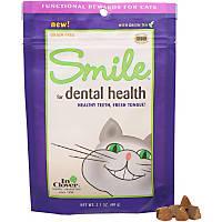 In Clover Smile Dental Cat Chews