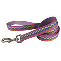 Hamilton Nylon Pink Chevron Print Dog Leash, 1' Width
