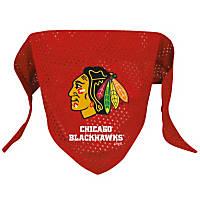 Chicago Blackhawks NHL Dog Bandana