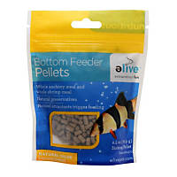 Saltwater fish food marine fish pellets flakes for Bottom feeder fish list