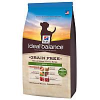 Hill's Ideal Balance Grain Free Salmon & Potato Adult Dog Food