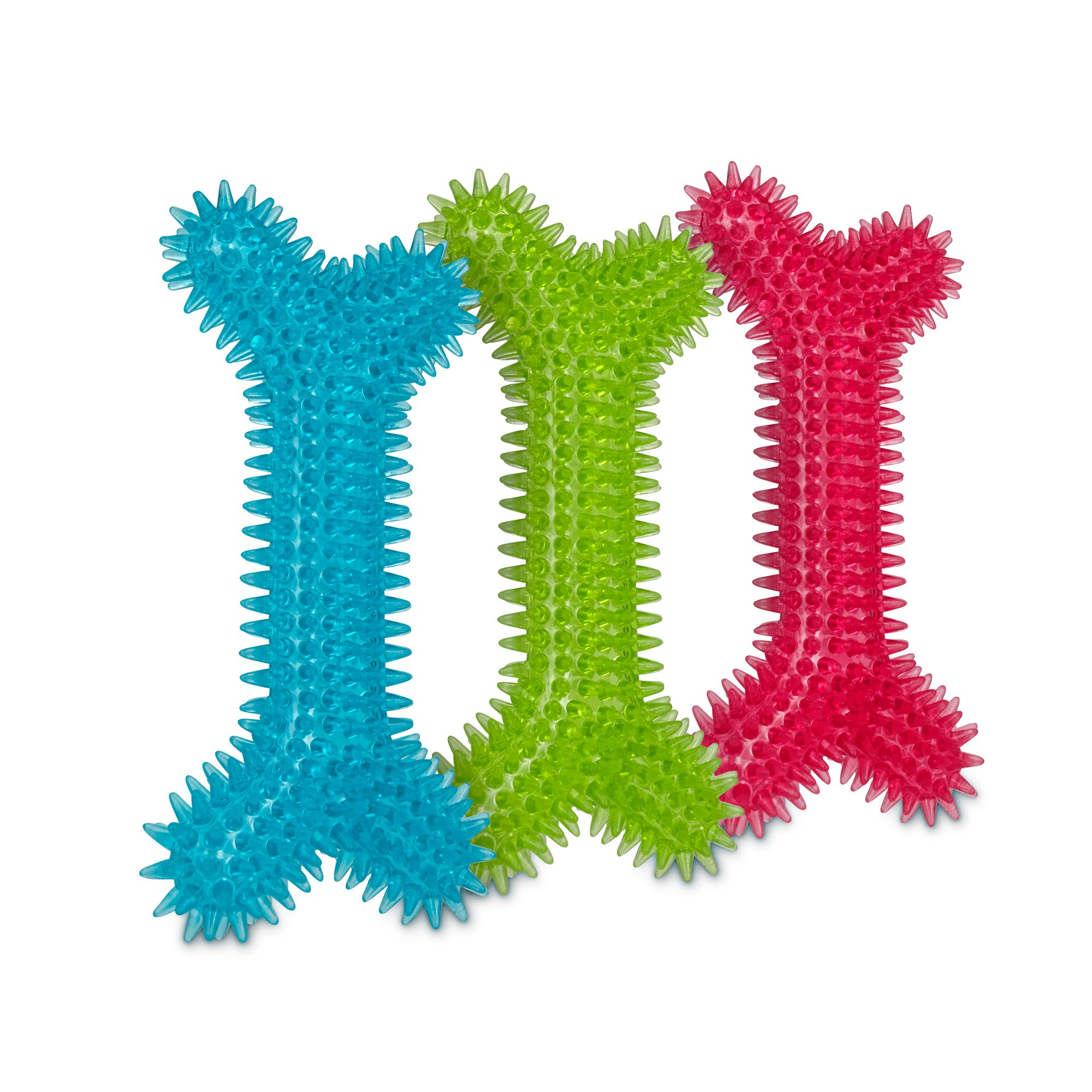 Leaps & Bounds Rubber Spiny Bone Dog Toy