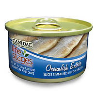 Canidae Life Stages Oceanfish Canned Cat Food