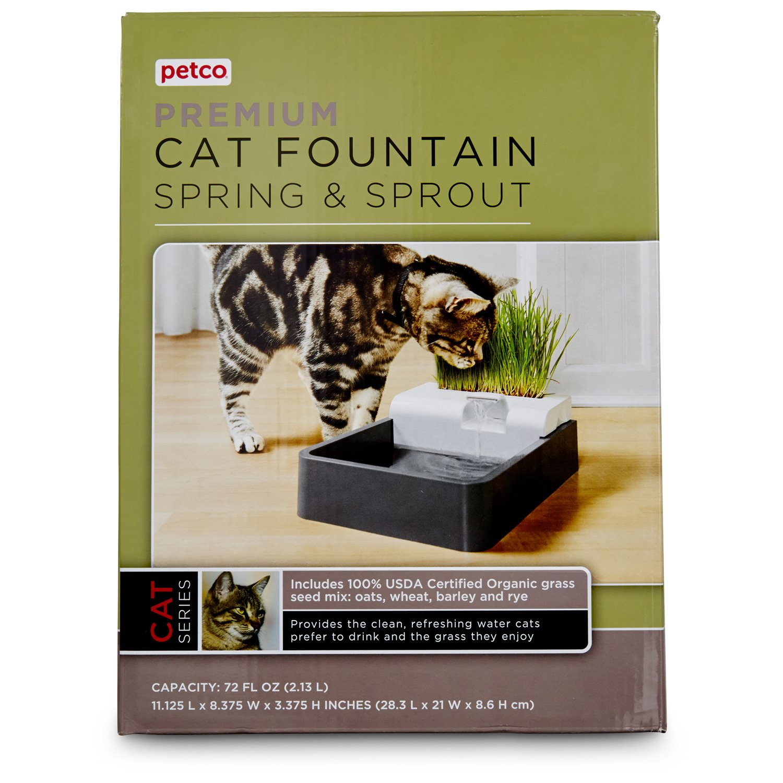 Petco Premium Spring & Sprout Cat Fountain