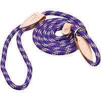 Hamilton London Quick Purple Confetti Dog Collar & Leash Combo