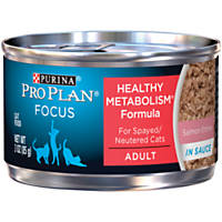 Pro Plan Focus Balanced Energy Canned Salmon Cat Food