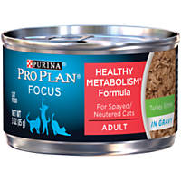 Pro Plan Focus Balanced Energy Canned Cat Food, Turkey