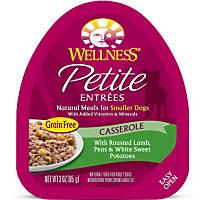 Wellness Petite Entrees Casserole Lamb, Peas & Sweet Potatoes Dog Food