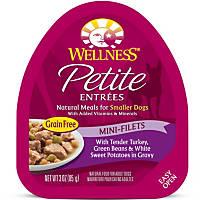Wellness Petite Entrees Mini-Filets Turkey, Green Beans & Sweet Potatoes in Gravy Dog Food