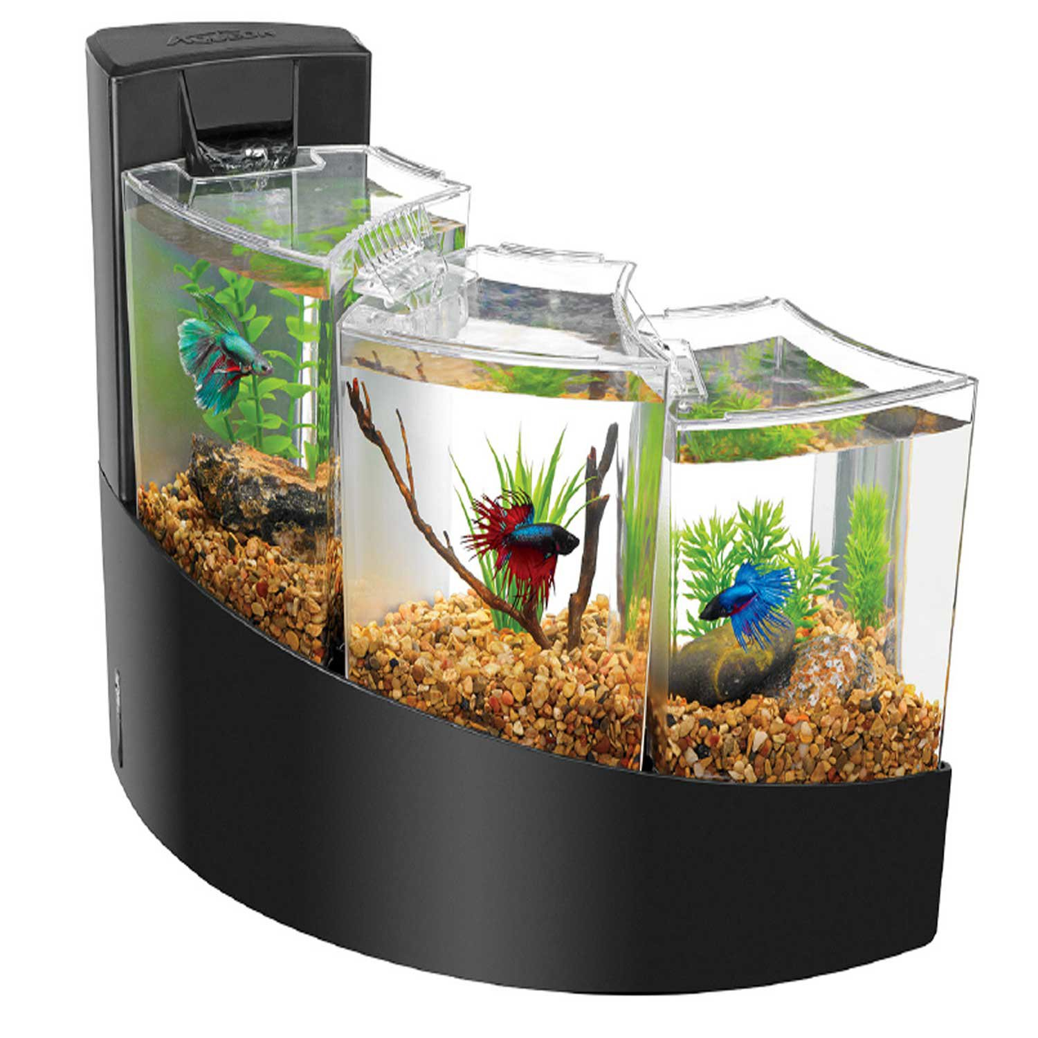 Aqueon glass aqueon kit betta falls black from for Betta fish tanks petco