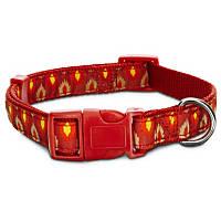 Petco Ikat Pattern Nylon Adjustable Dog Collar