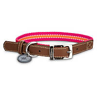 Good2Go Oxford Pink & Orange Dog Collar