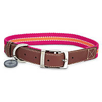 Good2Go Oxford Pink & Orange Dog Collar