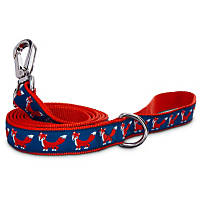Petco Red Fox Nylon Dog Leash