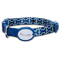 Good2Go Geometric Bone Print Light-Up LED Dog Collar in Blue & Green