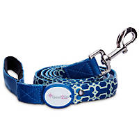 Good2Go Geometric Bone Print Light-Up LED Dog Lead in Blue & Green