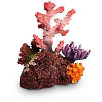 Petco Coral Garden Aquarium Ornament
