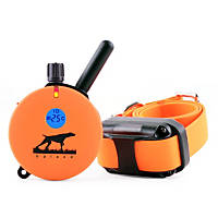 E-Collar Technologies Educator HD Upland Remote Dog Trainer
