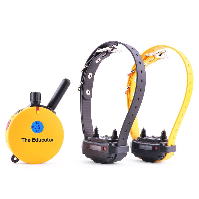 E-Collar Technologies Educator 2 Dog Remote Dog Trainer