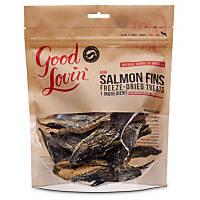 Good Lovin' Raw Salmon Fins Freeze-Dried Dog Treats