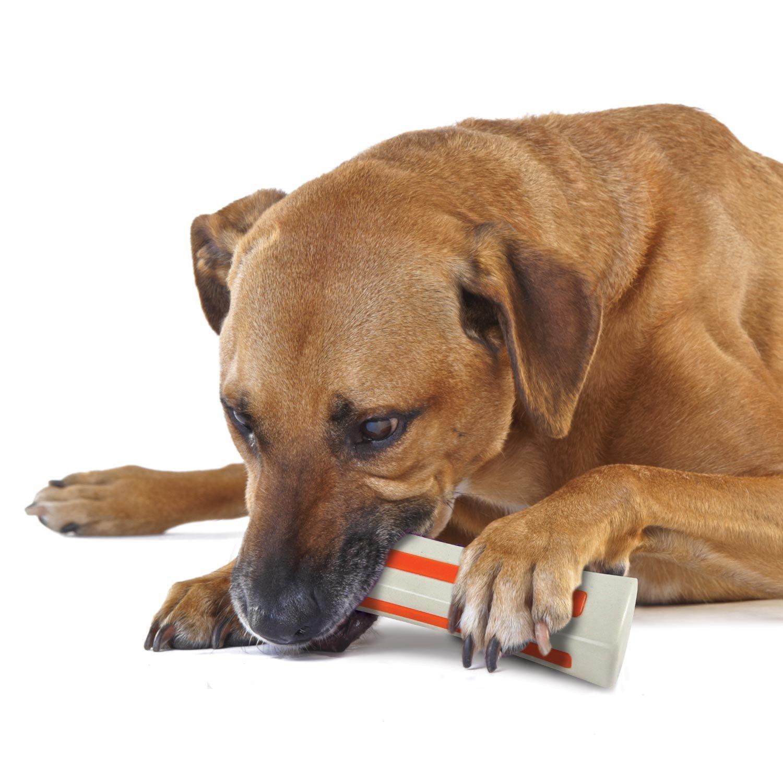 Petstages Beyond Bone Dog Chew Toy