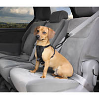 Good2Go Premium Seat Belt Extension Car Accessory
