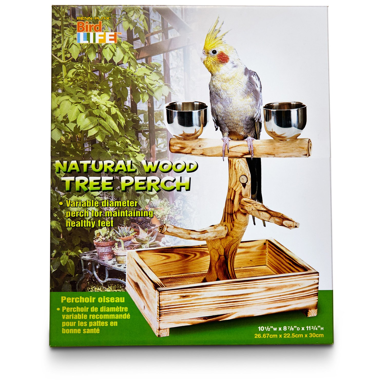 Penn Plax Bird Life Natural Wood Tree Perch