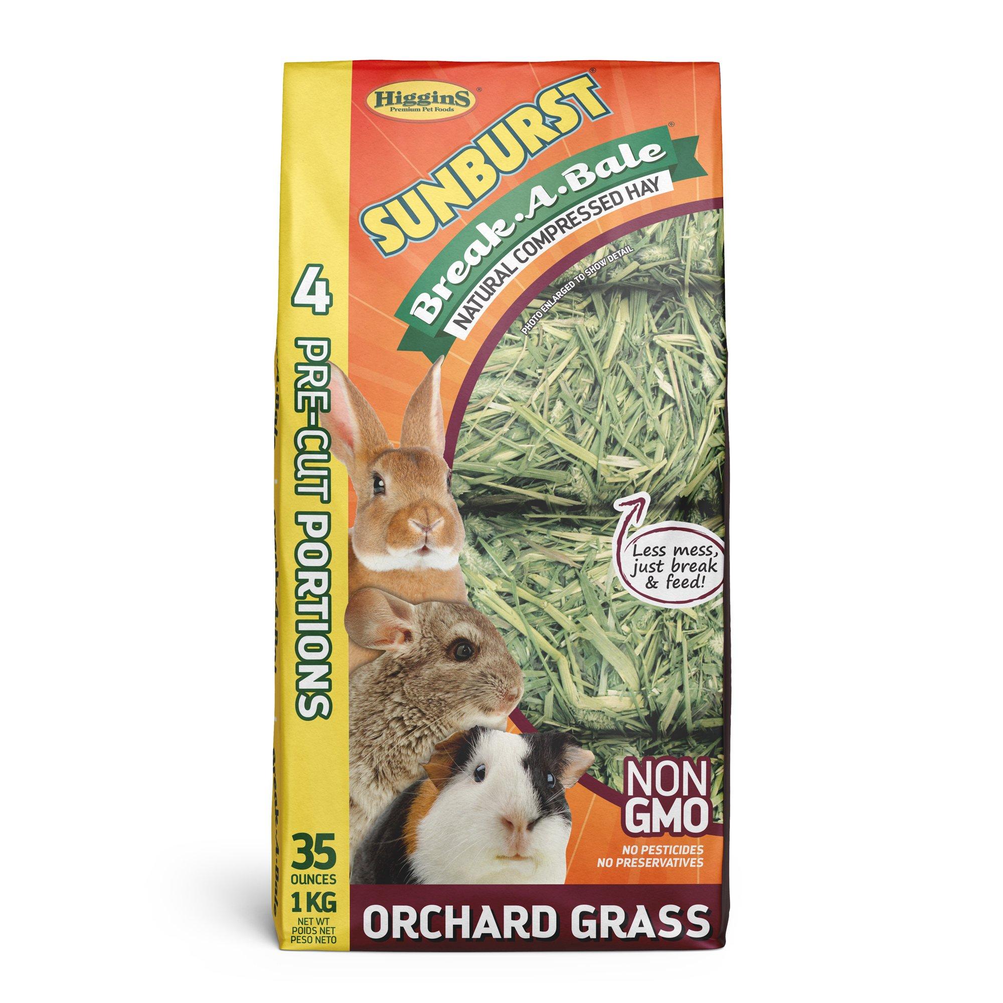 Higgins Sunburst Break-A-Bale Orchard Grass