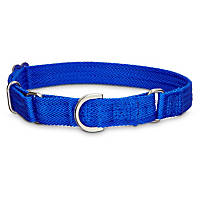 Good2Go No-Slip Blue Martingale Dog Collar