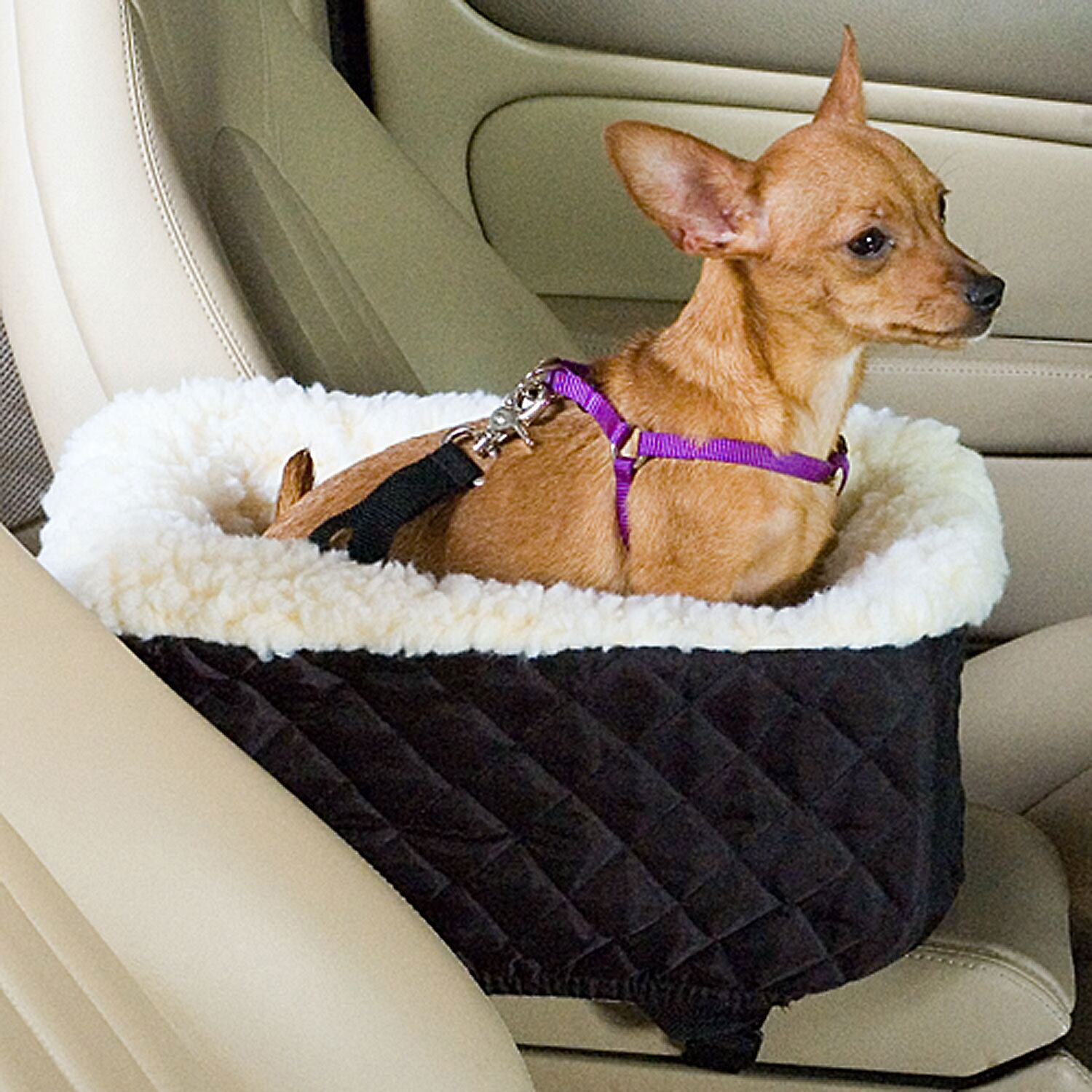 Snoozer Black Pet Car Seat Console Lookout, Small