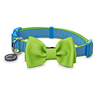 Good2Go Bow Tie Dog Collar in Green