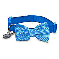 Good2Go Bow Tie Dog Collar in Blue Chevron