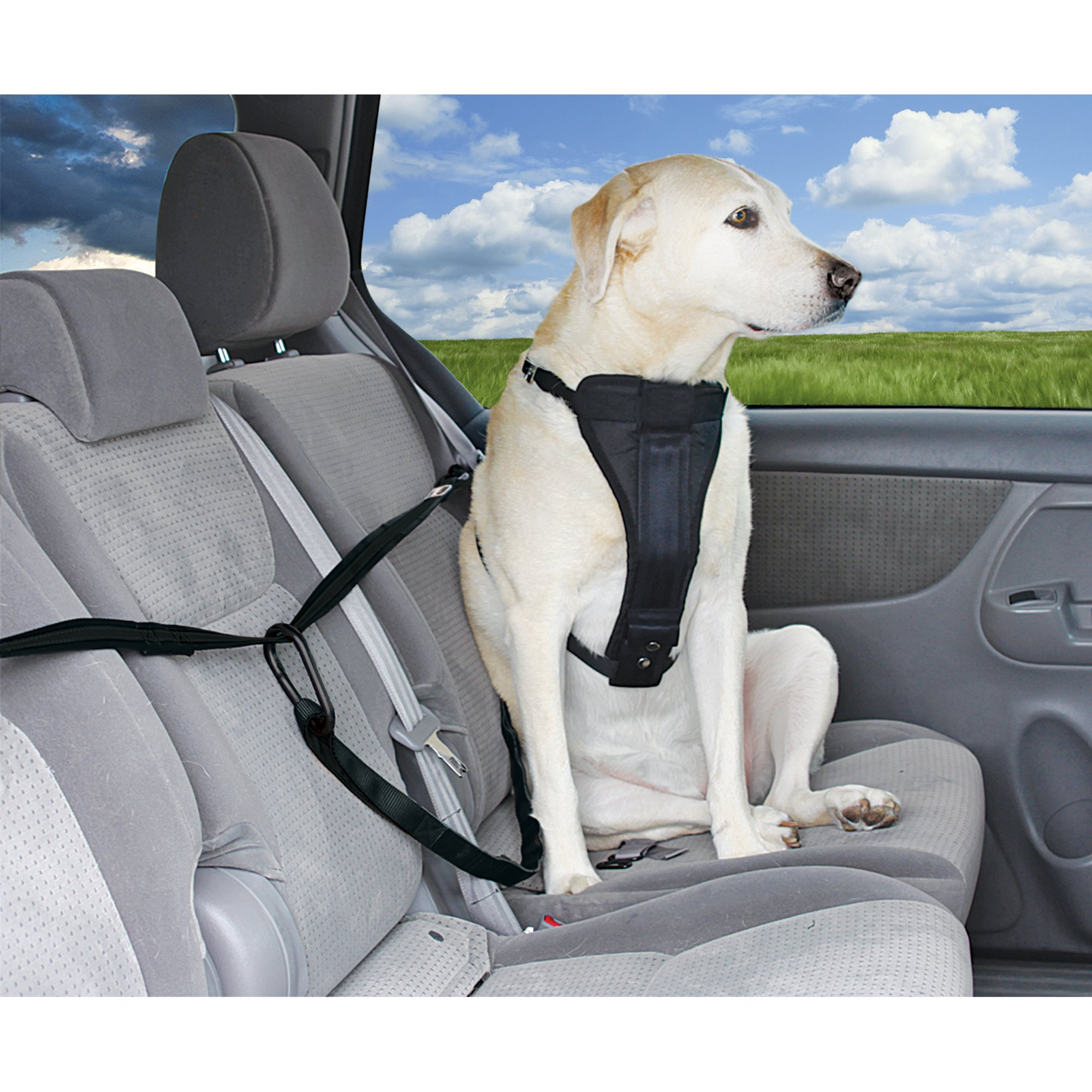 Good2Go Auto Zip Line Dog Seat Belt