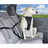 Good2Go Auto Zip Line Dog Seat Belt