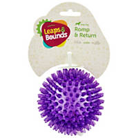 Leaps & Bounds Bouncing Spiny Ball Dog Toy