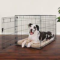 You & Me Doggy Den 1-Door Dog Crate