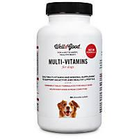 Well & Good Adult Stage Vitamins